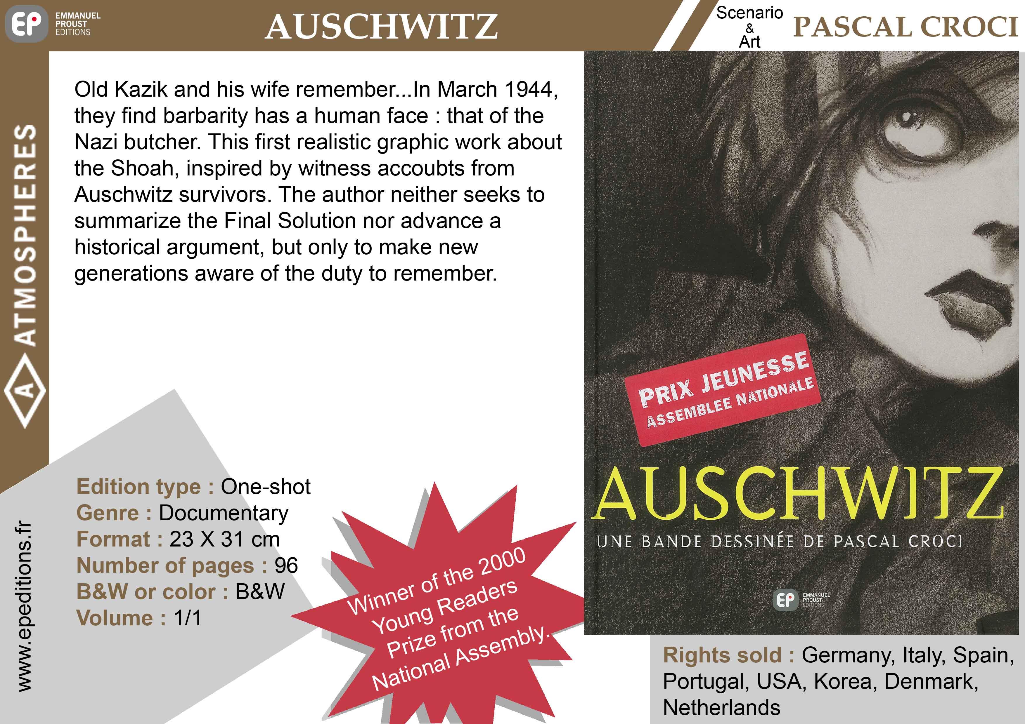 Auschwitz comics