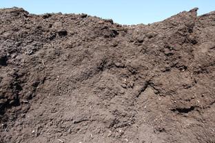 Premium Compost