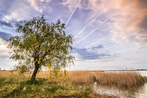 Landscape-Galerie (9 von 26).jpg