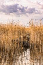 Landscape-Galerie (11 von 26).jpg