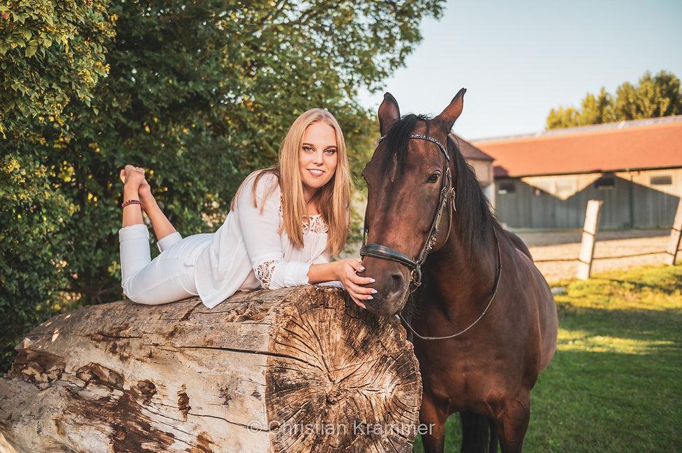pferdefotografie christian krammer großpetersdorf oberwart burgenland sunlanddesign