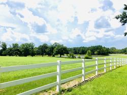 Shenandoah Farm