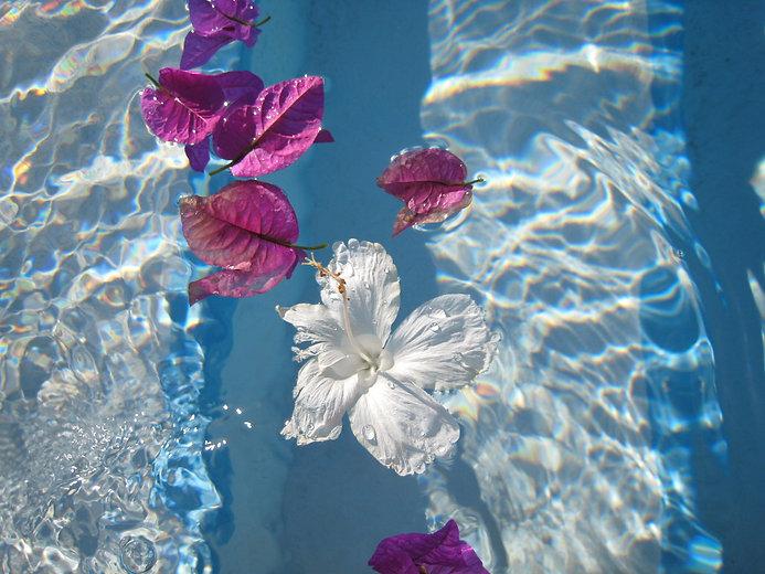 on arm hibiscus.jpg