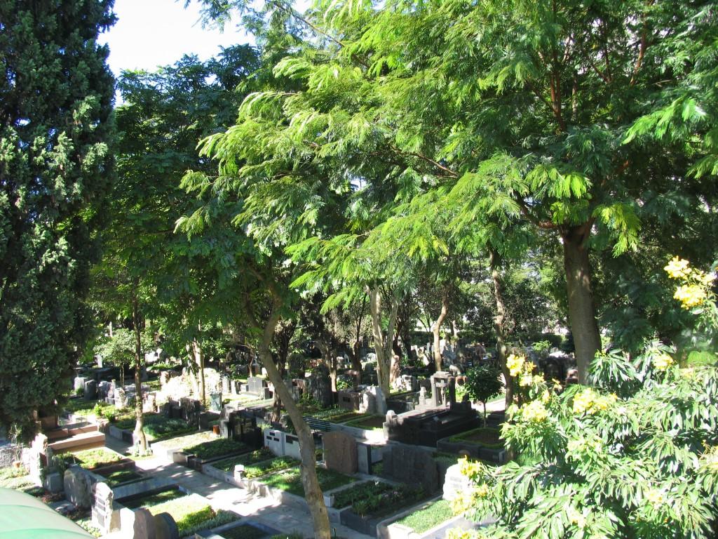 Cemitério-do-Redentor(22)