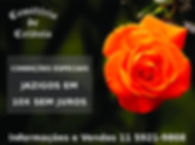 Destaque Campanha Cemiterio de Colonia 0