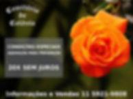 destaque-campanha-vendas-cemiterio-de-co