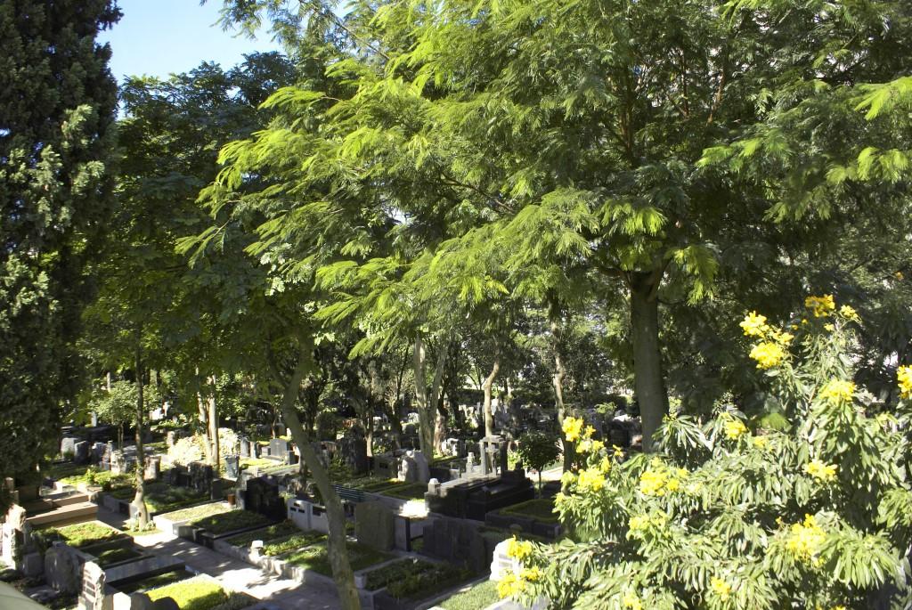 Cemitério-do-Redentor(12)