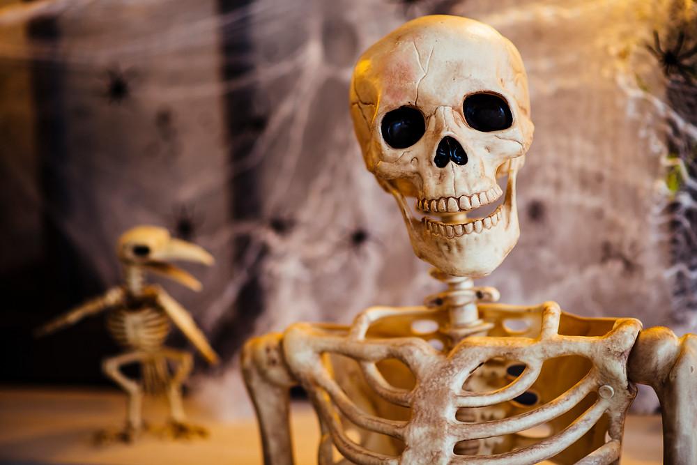 skeleton of the song, skeleton, luuranko kappaleessa, laulunkiirjoitus, lauluntekijävalmennus