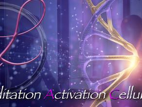 Méditation Activation Cellulaire 🧘🏼♂️🧘♀️🌸🌈😘❤️🌞💕🌹