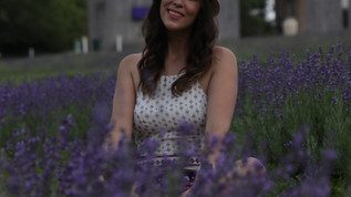 Why you should visit a Lavender field.