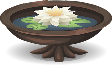 water-lily-576167_1280.png