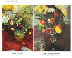 Comparison Bonnard - Berea