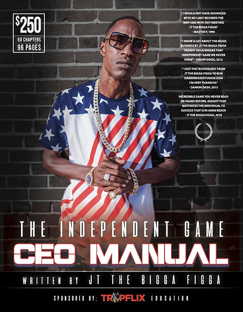 The Independent Game C.E.O. Manual