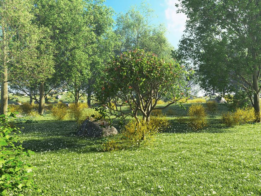 landscape test - spring sml.jpg
