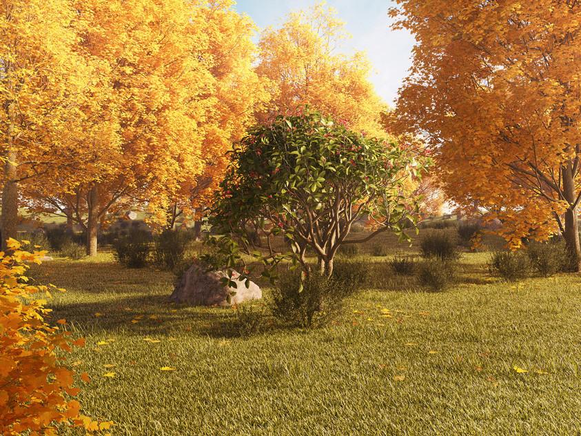 landscape test - automne 2 sml.jpg