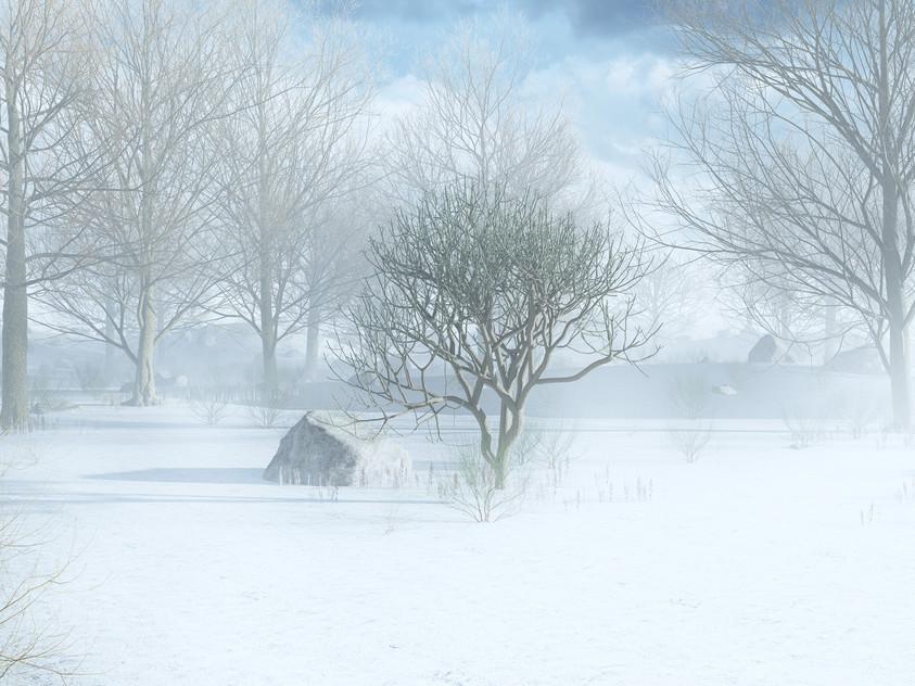 landscape test - hiver sml.jpg