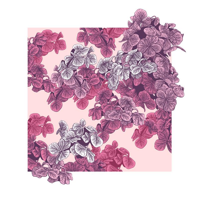 fleurs RW.jpg