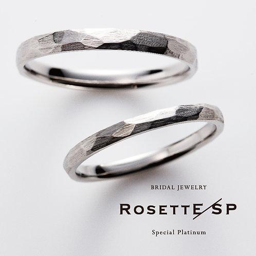 [RosettE/SP] Future