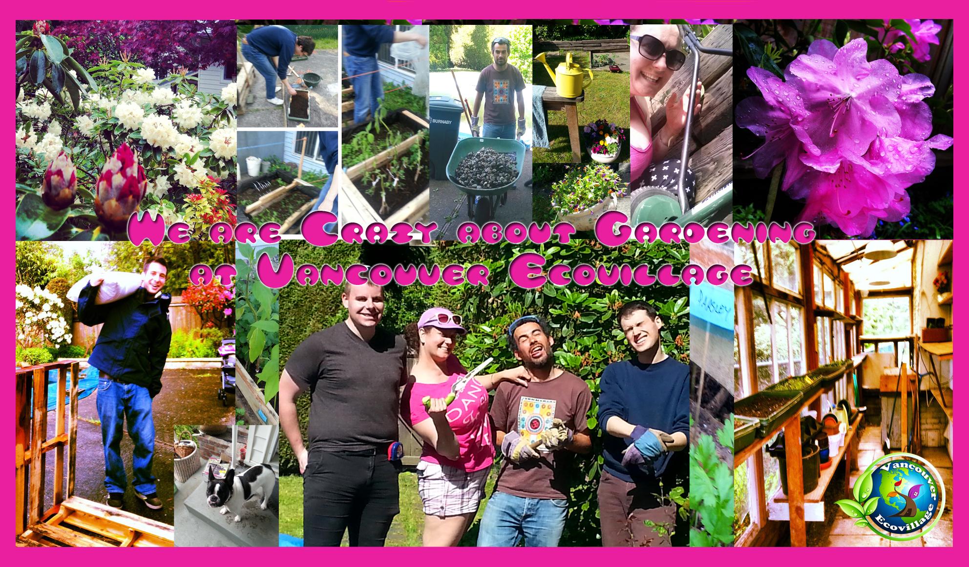 Crazy About Gardening