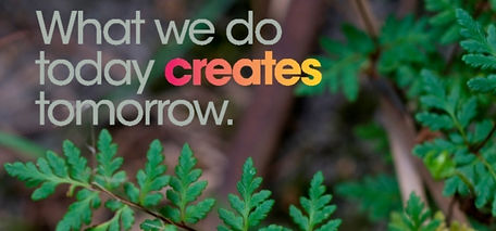 Square image with green leaves on the backgroud with a say: What we do today creates tomorrow
