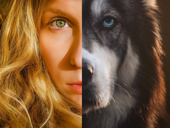 Goldilocks and the Wolf - How He Rescued Me from Abuse