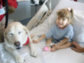 Little blond girl, 4 years old, sitting in the hospital bed smilling with a dog