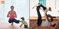 doga-what-benefit-poses-2-inside-post-1