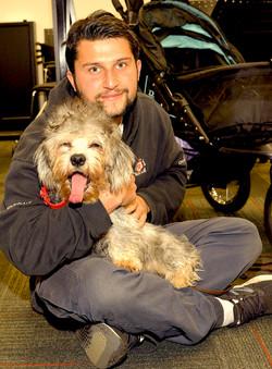 Dandie Dinmont Terrier Puppy 😹
