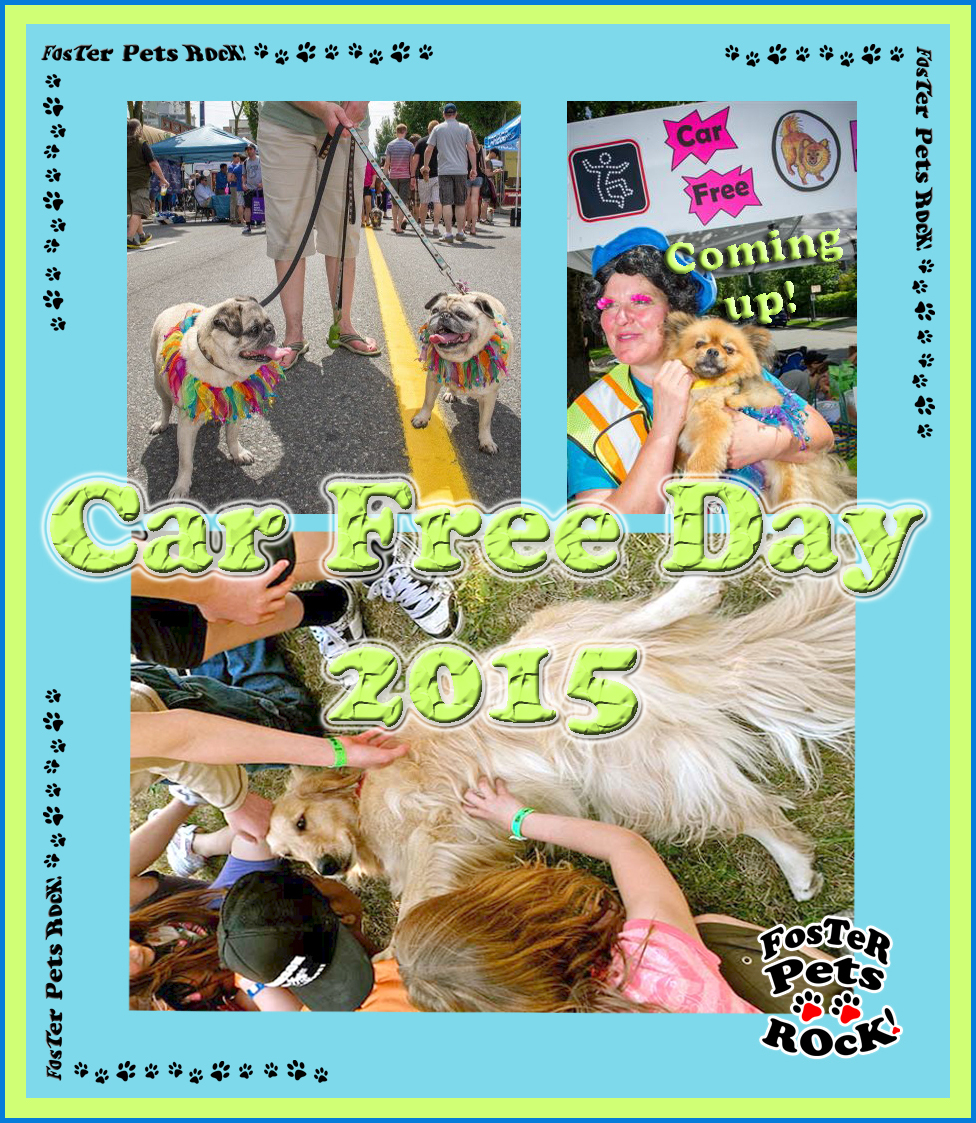 Car Free Day 20-21 June, 2015