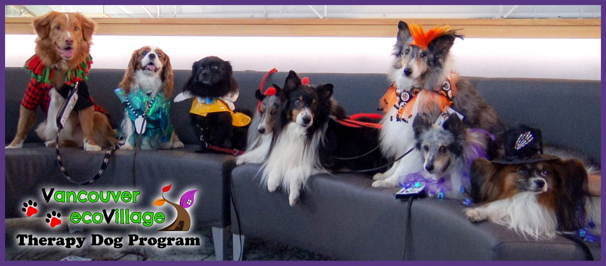 Therapy Dog Group (Tania Ryan)