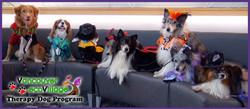 Therapy Dog Group (Tania Ryan)