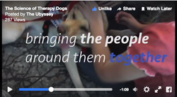 The Science of Therapy Dogs