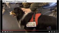 Doggy Destress at BCIT
