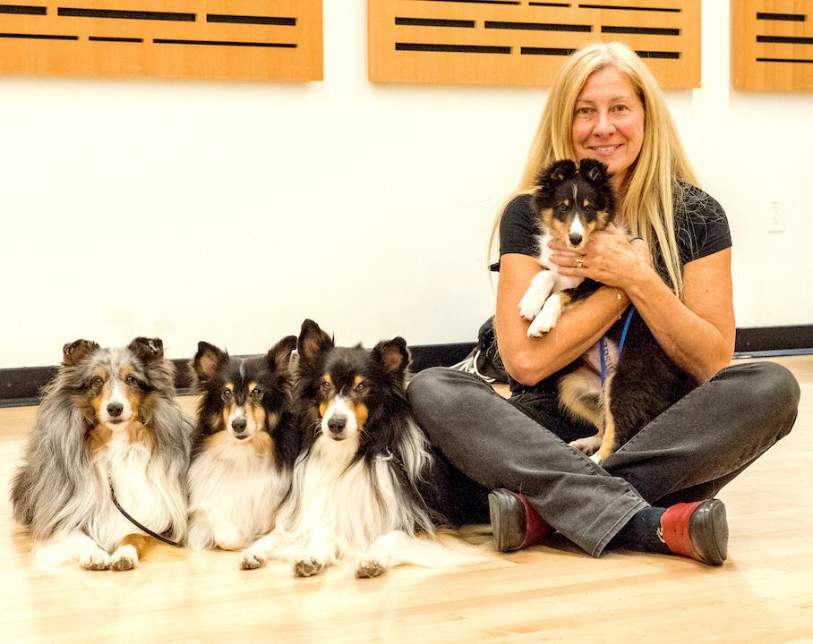 Shetland Sheepdogs & Michelle