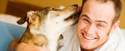 How Dogs Help Depression