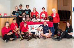 AMS & Therapy Dog Teams 💞