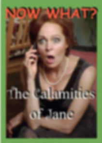 Jane Singer, The Calamaties of Jane, About the Series