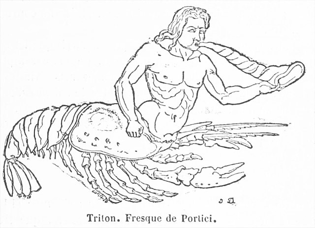 The triton depicted is very much like a centaur, except that instead of a horse, the bottom half is a lobster or crayfish. He is blowing on a horn.
