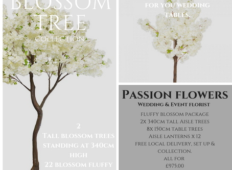 Fluffy blossom trees that WOW