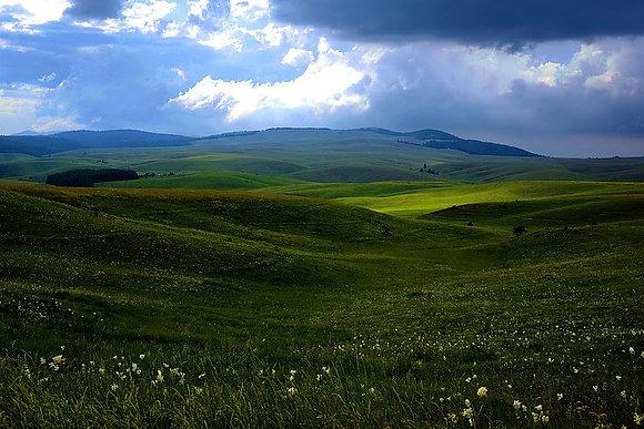 Landscape 897
