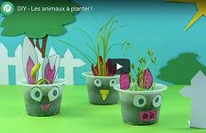 animaux_à_planter.jpg