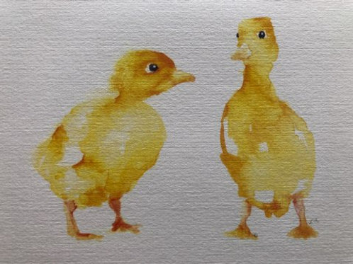 Yellow Ducklings