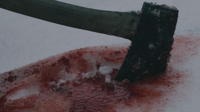 axe in snow.jpg