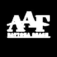 AAF Daytona Logo copy.png