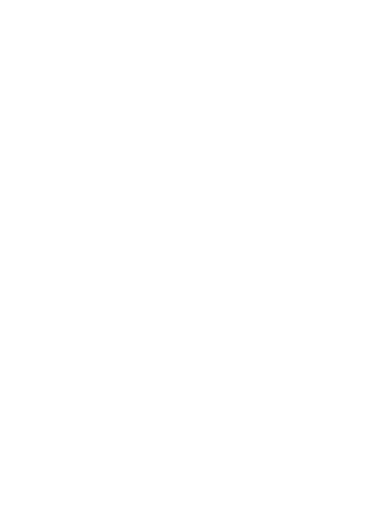 Holiday Mini Session Special Details - C