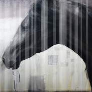 Generative horse