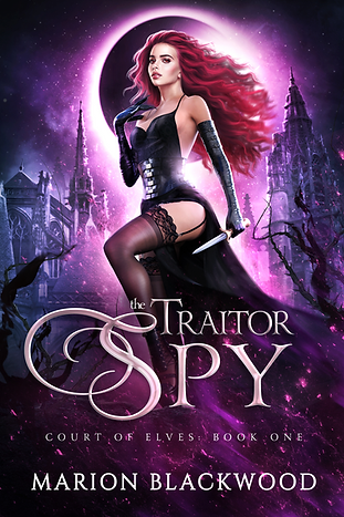Fantasy book The Traitor Spy by Marion B