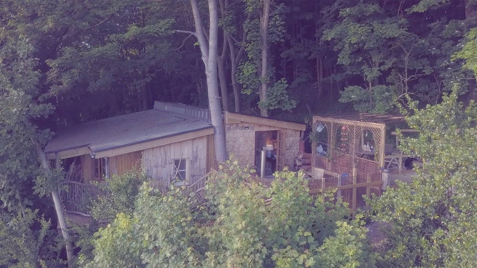 Amazing Tree-House in Dorset for Rent...