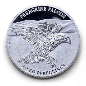 Tower Mint Peregrine Falcon Ten Pound Coin Reverse