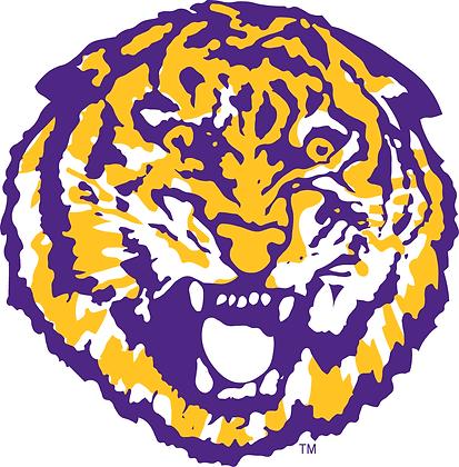 LSU Tigers 1972-1979